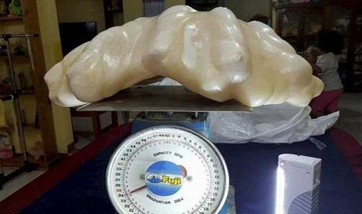 filipino-fisherman-found-a-giant-pearl-in-palawan-island