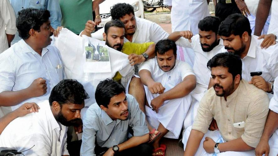 kerala-beef-row-kerala-police-arrests-8-youth-cong-workers-including-former-iyc-kannur-parliament-constituency-committee-rijil-makutty-for-killing-an-ox-ss
