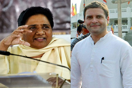 bsp-congress together in himachal and gujrat election - NATIONAL NEWS